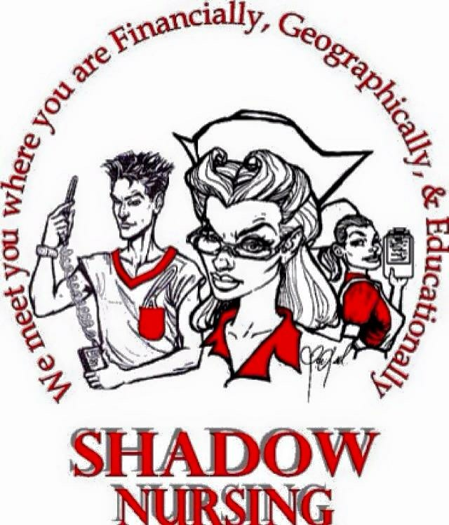 Shadow Nursing LLC